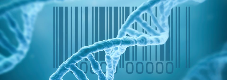 When it Comes to Marketing, is DNA TMI?
